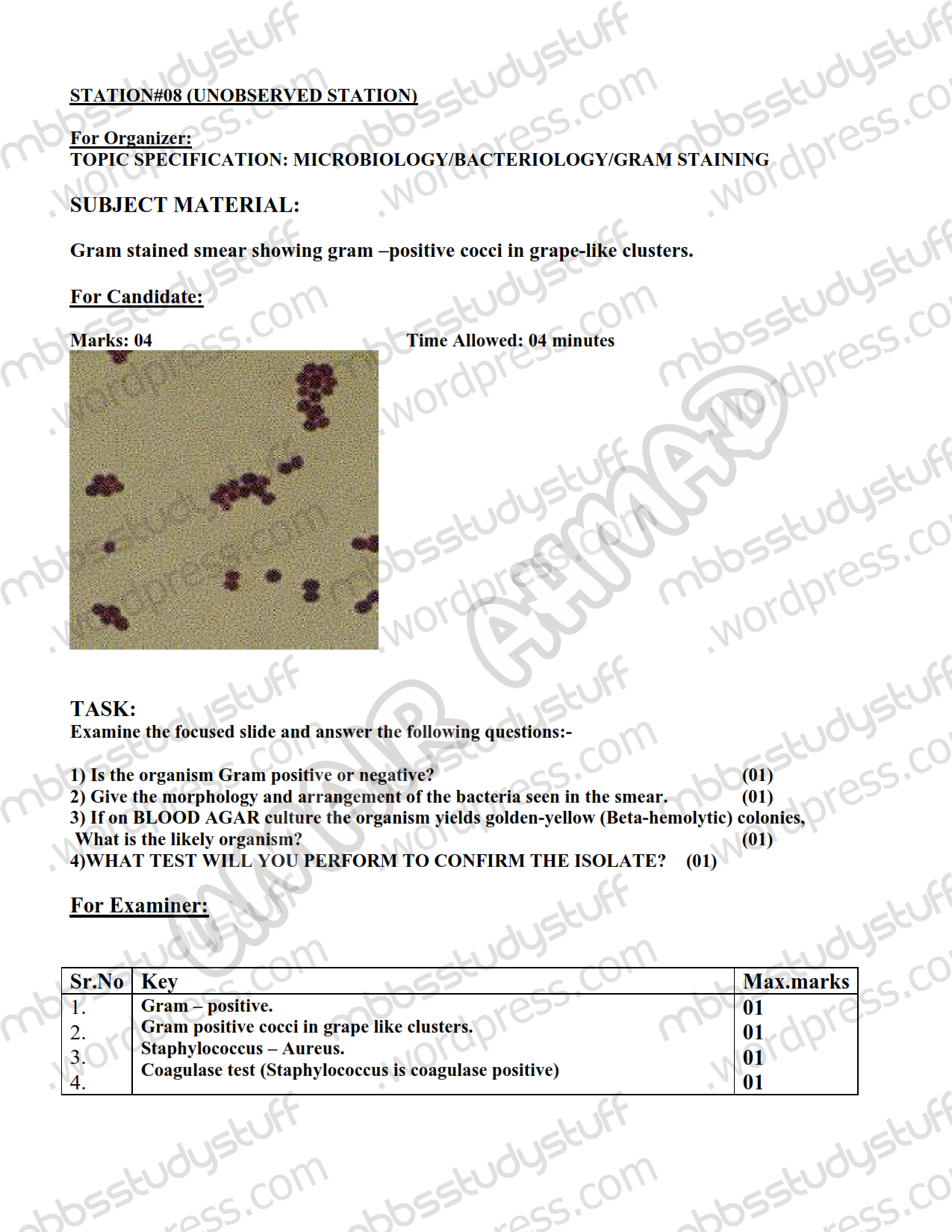 general pathology essay questions Preparing for the pathology board exam will not be without its difficulties make  life easier by answering these 5 free pathology sample.