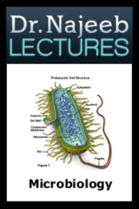DR NAJEEB Microbiology Lectures