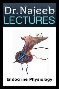 Dr.-Najeeb-Endocrine-Physiology-Lectures