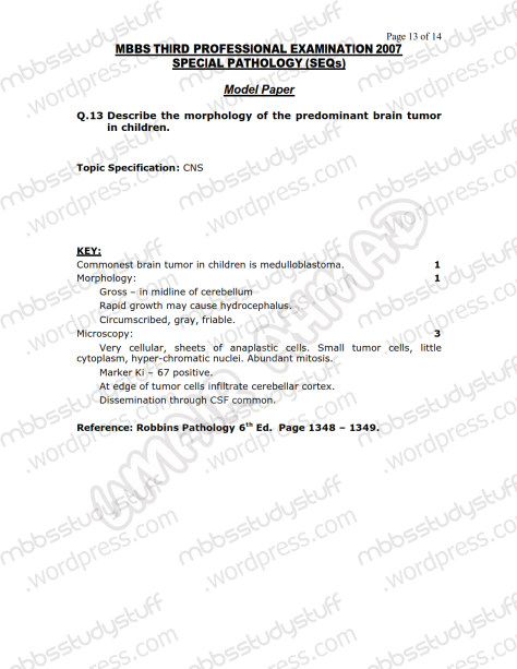 SPECIAL PATHO Model SEQ 2007 (13)